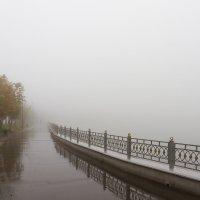 Туман :: Александр Неустроев