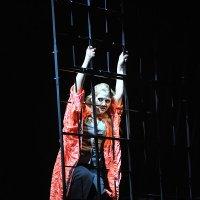 Мюзикл «Яма» :: Natalia Zhigareva