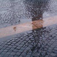 Отражение на Дворцовой площади :: vadim