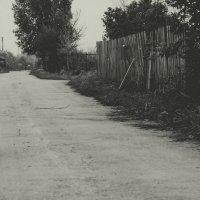 Как страшны жизни сей оковы, нам в одиночестве влачить... :: Анна Гаврилова
