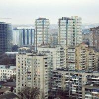 Городские джунгли :: Алексей Лебедев
