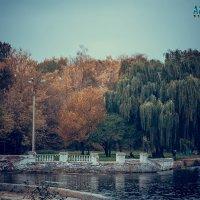 парк :: Oleg Alexeevich