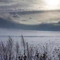 Зимнее море... :: Vadim77755 Коркин