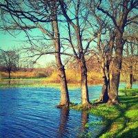 Весенний разлив :: Артём Яковлев
