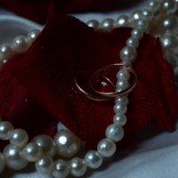 обручальные кольца :: Наталья Маркелова