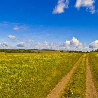 Дорога в лето :: Константин Вавшко