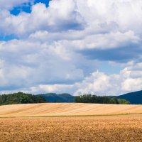 Выйду в чисто поле и вздохну аромат земли :: Valeria Ashhab