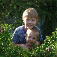 Детки :: Светлана Воронкова