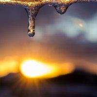мороз и солнце - день чудесный :: Sergey Bagach