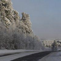 Любимые дороги******* :: Павел Федоров