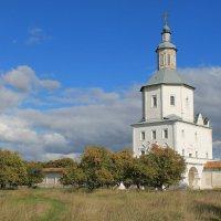 Стены Свенского монастыря :: Максим Горбачев