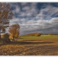 Уж небо осенью дышало... :: Boris Alabugin