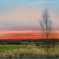 Природа готова к зиме :: Ринат Валиев
