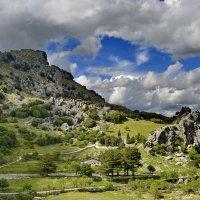 Там, где встречаются облака и горы :: Виталий Половинко