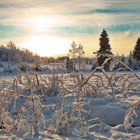 валдайские зарисовки(день морозный,день прекрасный) :: юрий макаров