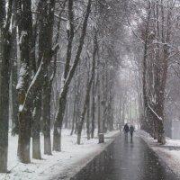 Нам  погода  нипочем, так  как дружно мы  живём. :: Наталья Соколова