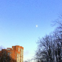 Ясная луна :: Nata S