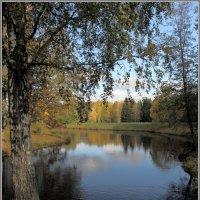 Осень в Павловском парке - 3 :: Владимир Иванов