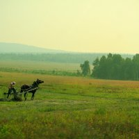 В полях... :: алексей афанасьев