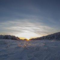 Встреча зимнего солнышка** :: Павел Федоров