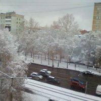 Первый снегопад :: Маргарита Тарасова