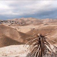 Иудейская пустыня, Израиль :: Lmark