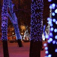 волшебные деревья :: Людмила Кораблёва
