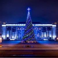 Новогодняя Ёлка на Октябрьской пл. Минск. :: Александр Тарасевич