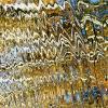 Кардиограмма  Осени :: олег свирский