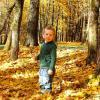 Малыш в осеннем парке :: Милешкин Владимир Алексеевич