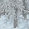 Зимние узоры :: Борис Гуревич