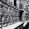Зима.. Январь - Мороз и снег!) :: Евгений