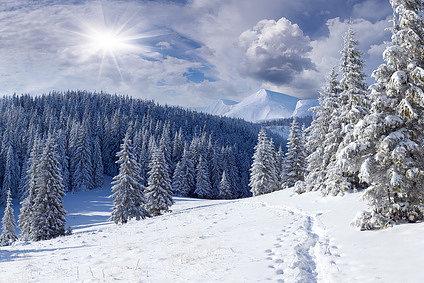 Фотоконкурс «Зимний пейзаж (2014)»