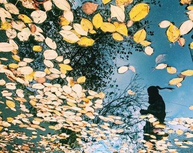 Фотоконкурса«Отражения»