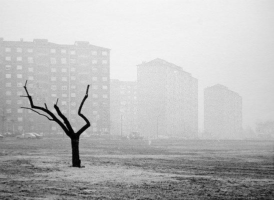 Итальянский фотограф Аугусто Кантамесса