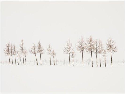 Фотограф Йозеф Хофленер