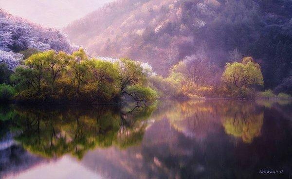 Фотограф Jaewoon U