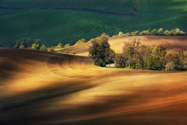 Фотограф Гжегож Левандовски