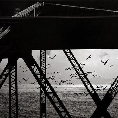 Фотограф Zsar Chankian