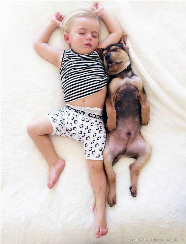 Милые дети и собачки новый тренд