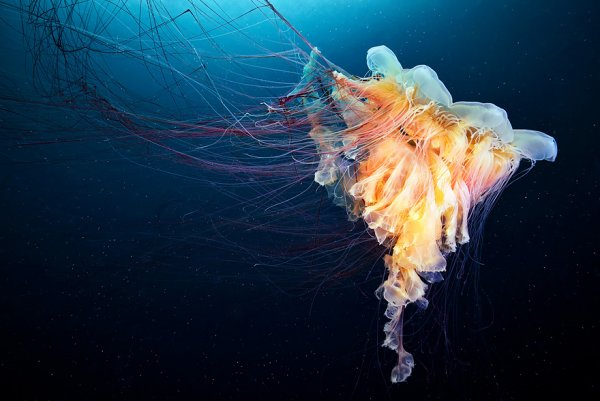 море вода глубина