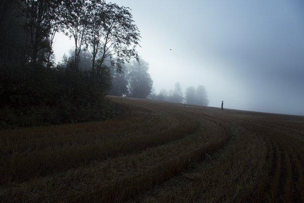Северная природа в фото 8