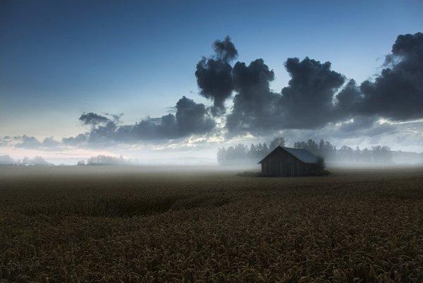 Северная природа в фото 12