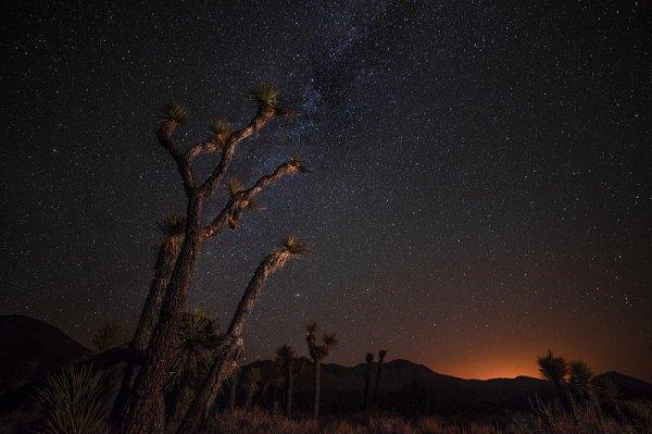 фото звёздного неба посмотреть 16