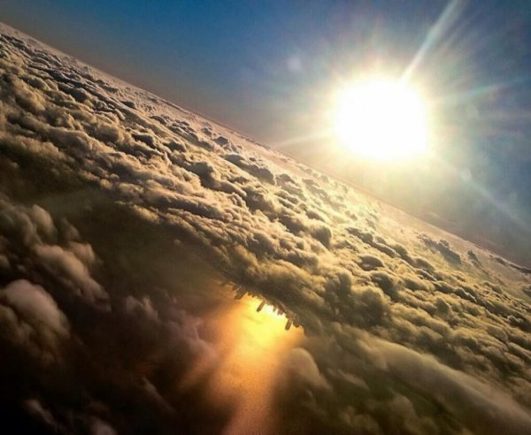 яркий солнечный свет