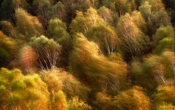 Фотографии природы