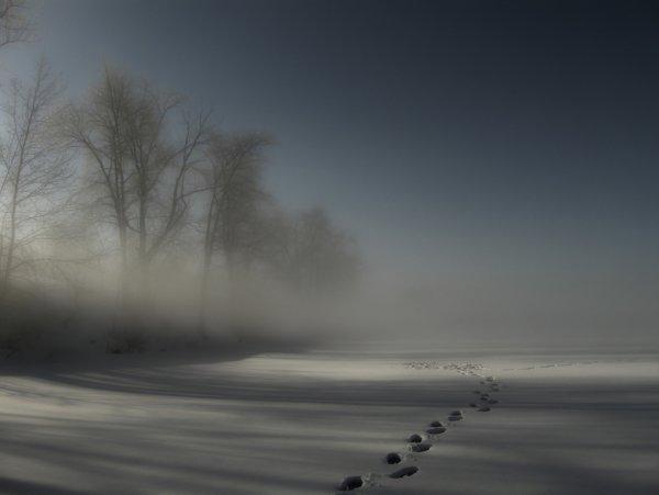 Роман Лысов - Зимний туман