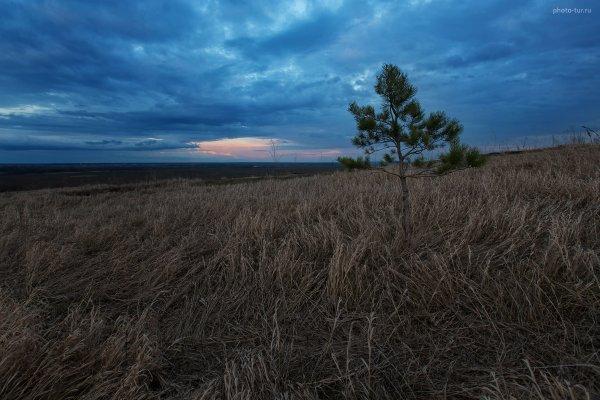 Фототур по Подмосковью на майские праздники - один день - №26