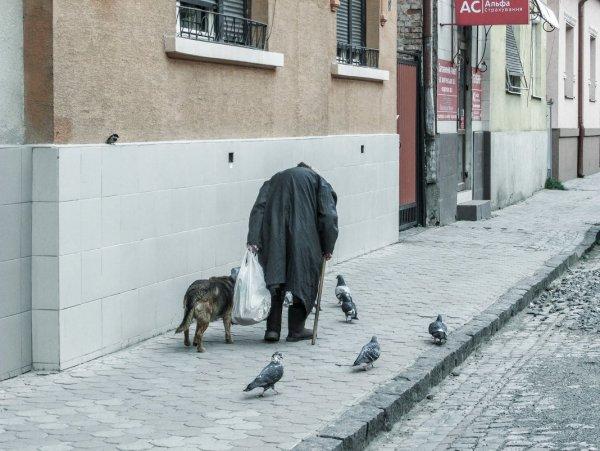 НаталиЯ - Старуха, собачка, голуби и воробушек