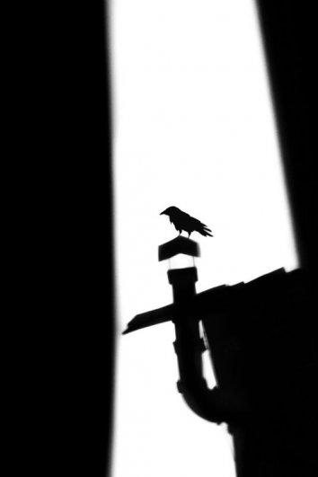 Лиля Ахвердян - Ворона